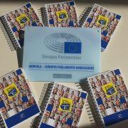 "Projekto ,,Mokyklos-Europos Parlamento ambasadorės"" rezultatai"